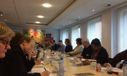 Sastanak evropskih eksperata povodom izrade preporuka za deveti sastanak Otvorene radne grupe za starenje